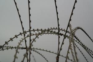 nato-wire-236848_640